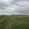 Teren agricol 21793 mp, Domnesti, Teghes, Ilfov