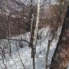 Teren intravilan 9400 mp, Moieciu de Jos, Brasov