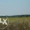 Teren Intravilan Loturi C-tii Destinatie Mixta Localitate Copaceni Judet Ilfov