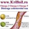 Tratament natural colesterol si trigliceride