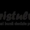 TuristulVesel – Cea mai buna decizie pentru vacantele tale