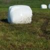 Vand baloti lucerna semisiloz  infoliati an 2017 sau accept schimburi