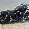Vand Harley Davidson Sportster 1200 Custom