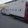Vand Renault Master an 2012  cu remorca amenajate pt transport animale.