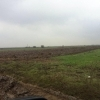 Vand teren agricol 1074 ha, in Ghimpati,jud Giurgiu