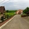 Vila Mahmudia - Delta Dunarii