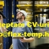 We are hiring Warehouse and Production workers in Holland!