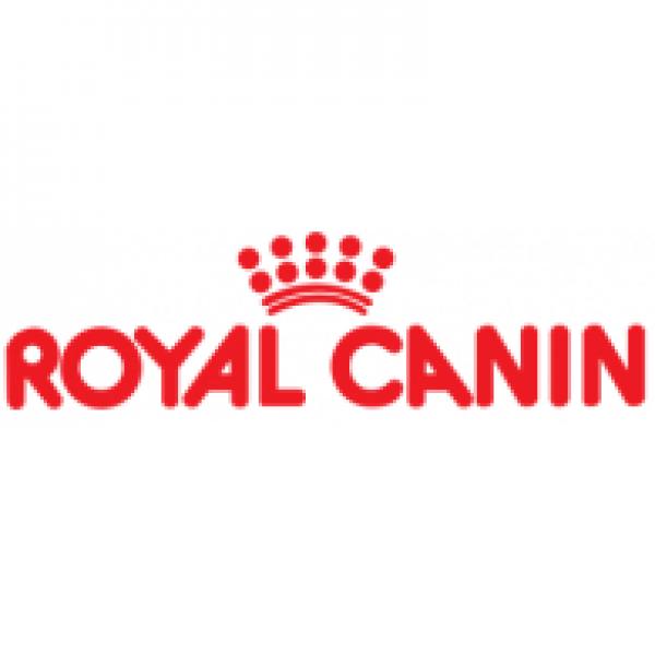 Hrana bogata in vitamine si nutrienti pentru catei Royal Canin