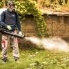 Dezinsectia pentru daunatorii de primavara-vara