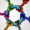 Modalități de colaborare trans-sectorială