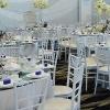 Oferta meniu nunta – pentru o reteta de succes